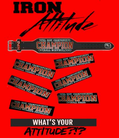Champion Belts All Divisions